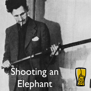 essays on george orwell shooting an elephant